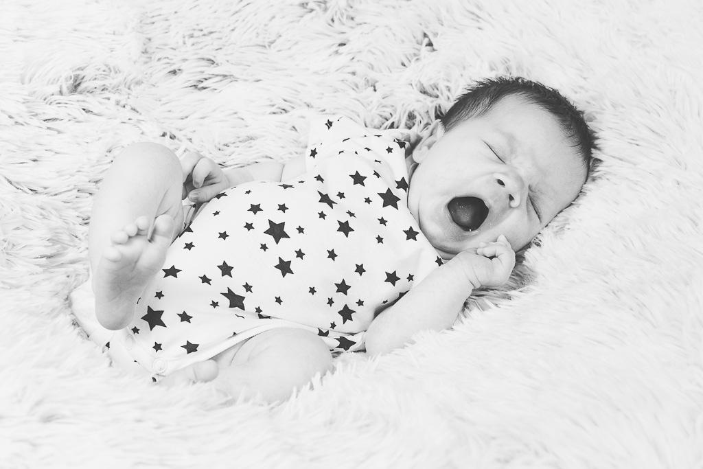 newborn štětí